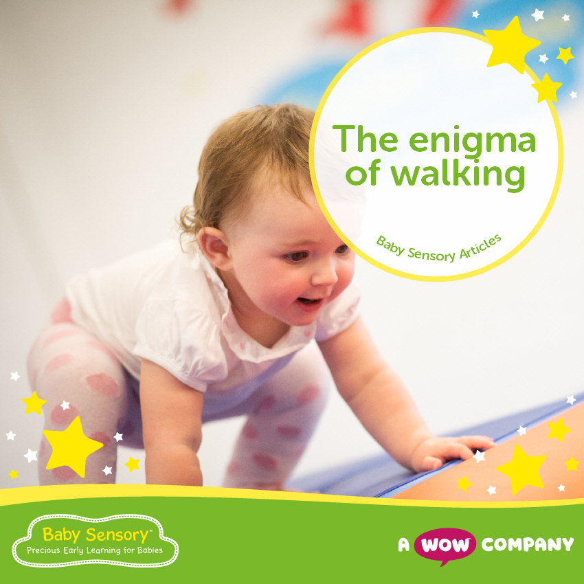 The Enigma of Walking
