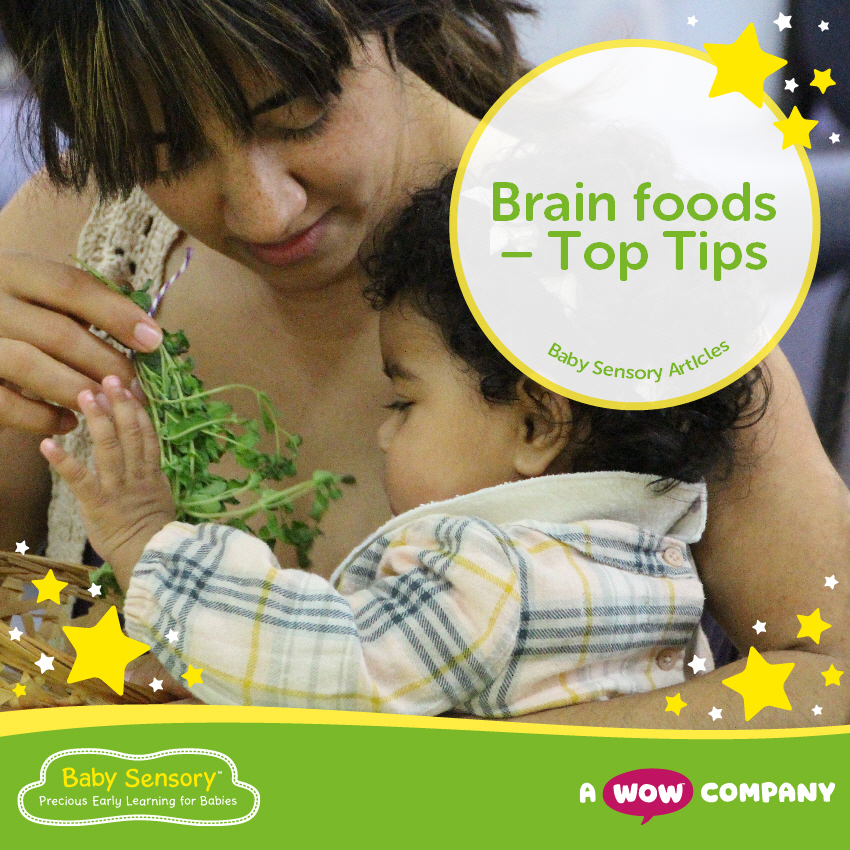 Brain Foods - Top Tips